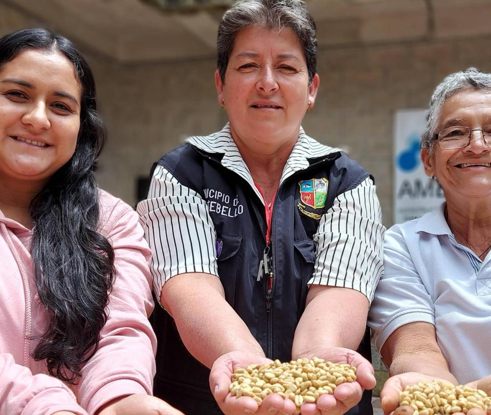 Volver a la tierra y trabajarla: historias de restitución en Antioquia