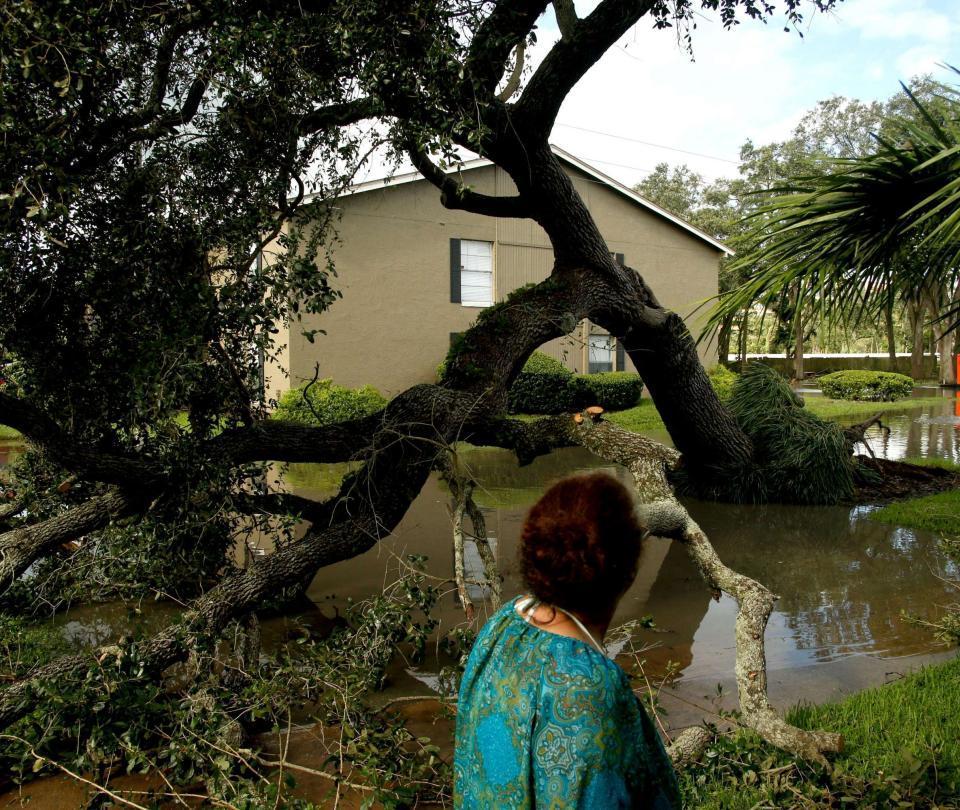 Video de monja cortando árboles con motosierra se vuelve viral