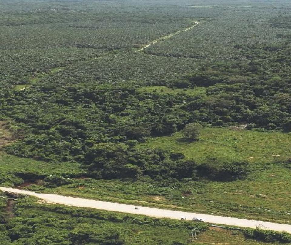 El Catatumbo tiene la primera reserva forestal de la sociedad civil