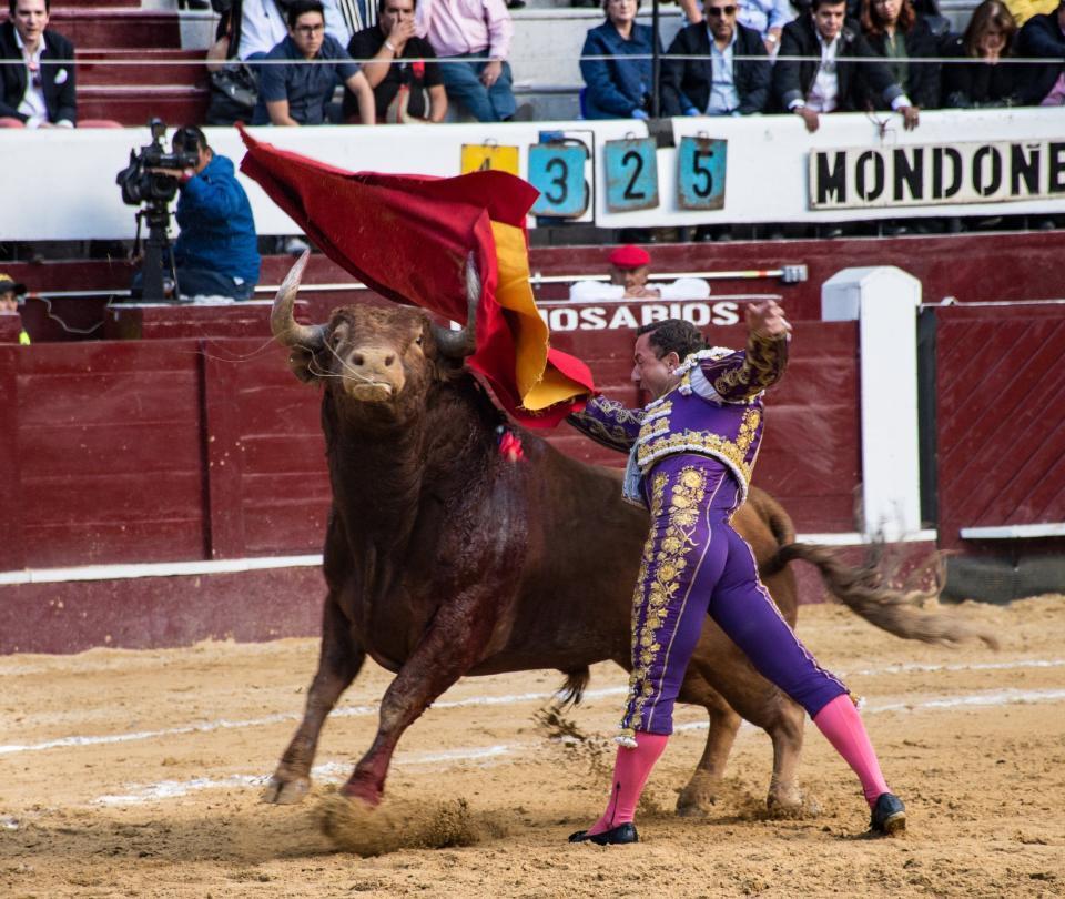 Los Mondoñedo ponen a prueba al torero revelación del 2018