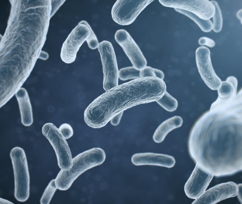 Diseñan una 'bomba genética programable' que mata solo bacterias malas