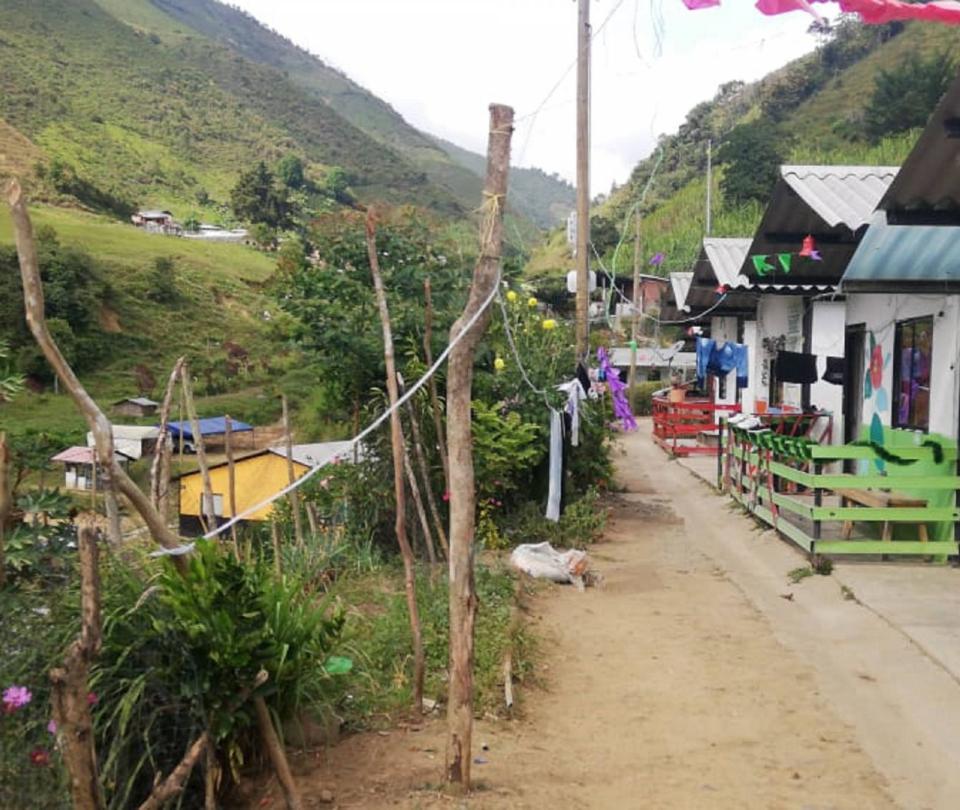 Exguerrilleros en Ituango tienen nuevo predio para producción agrícola