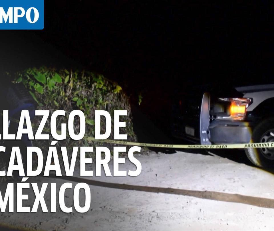 Investigan hallazgo de 12 cadáveres en el este de México