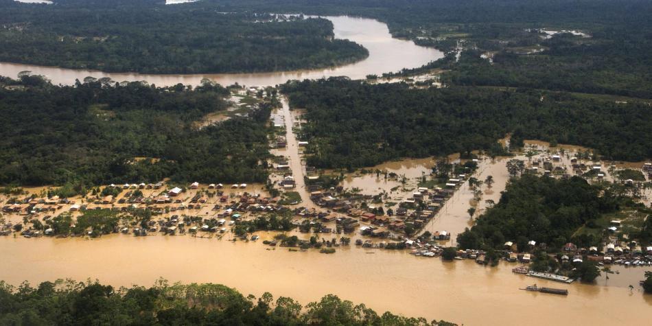 Deforestación en Colombia creció un 44 por ciento