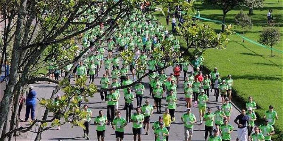 Invitan a correr para proteger a los árboles
