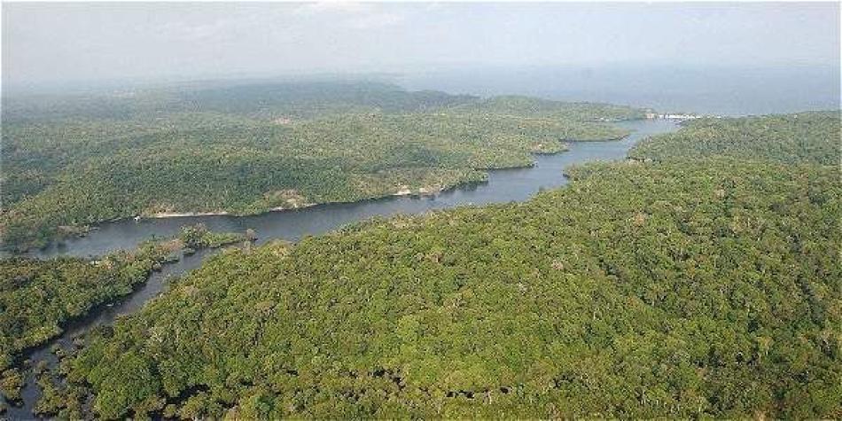 Sí es posible preservar la Amazonía