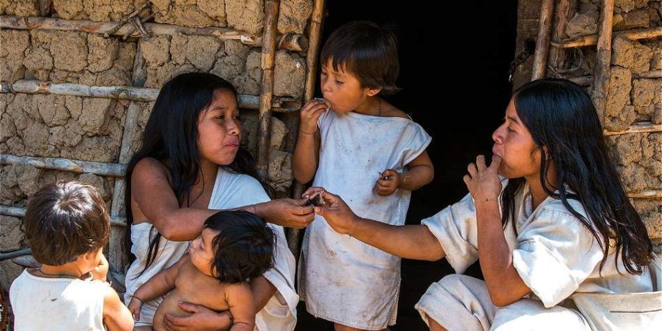 Población indígena colombiana ronda los dos millones