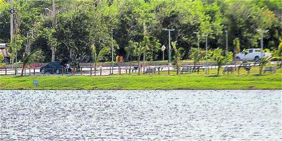 Por sobrepoblación, recomiendan pescar en el Lago del Cisne