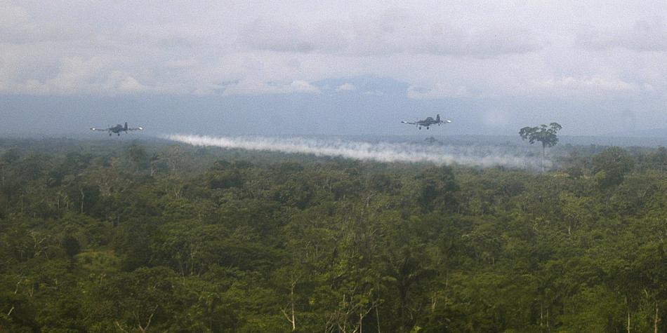 Pide a Colombia que se reanuden fumigaciones aéreas en campos de coca