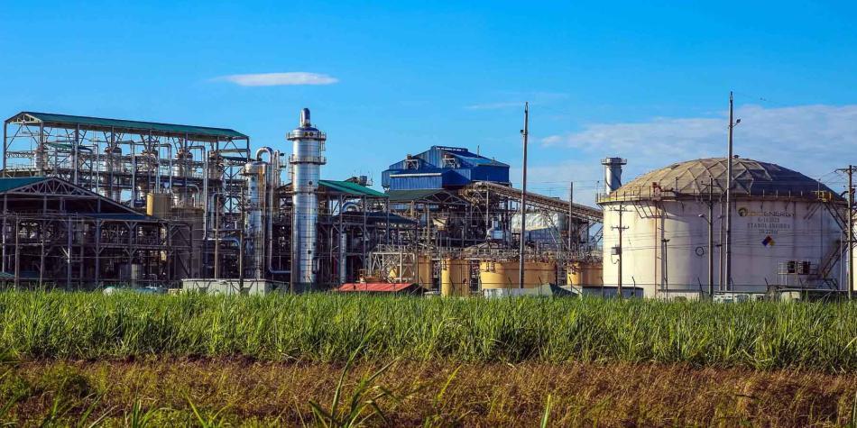 Claves de la quiebra de Bioenergy, firma de Ecopetrol que se liquida