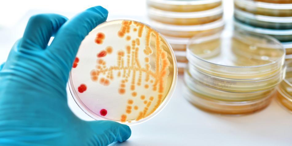 Los dos casos nuevos de 'supergonorrea' que detectaron en mujeres