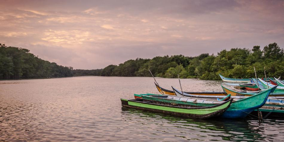 Así es Cabo Manglares, el nuevo resguardo de la naturaleza en Colombia