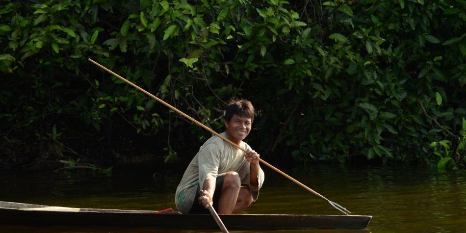 Regresar al bosque: retos de Colombia después del coronavirus/ Opinión