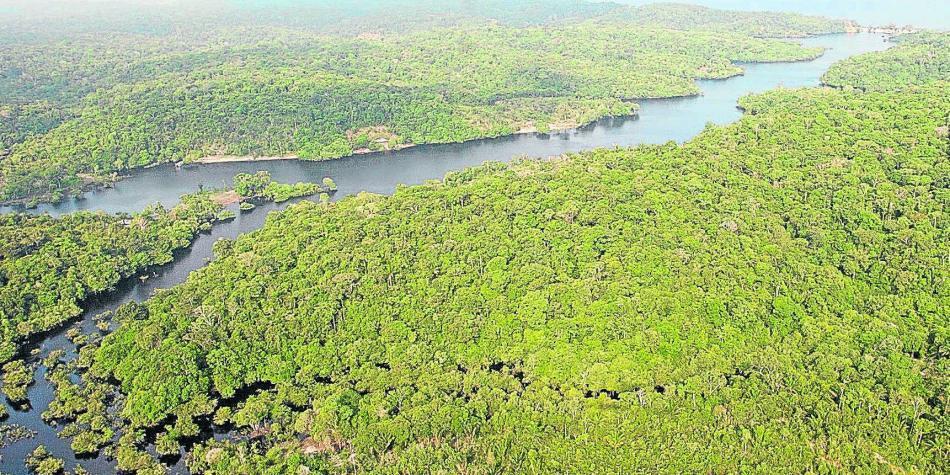 Qué representa la Amazonia para el mundo