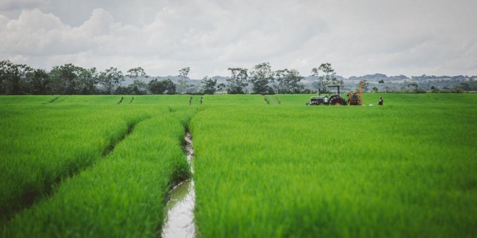 IICA y UE lanzan aplicación con medidas para el sector agropecuario