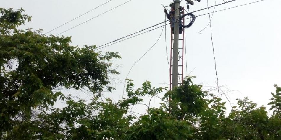 Se han afectado 4 mil familias por el hurto de redes en el Atlántico