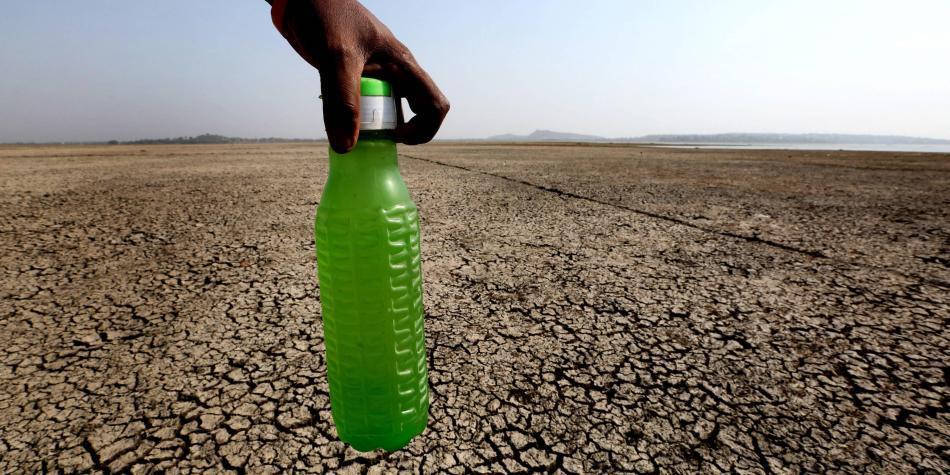Sequía en la India provoca comportamientos extraños en animales