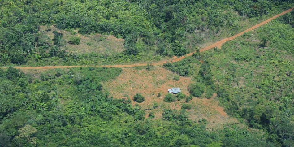 Precios del oro aumentan riesgos sobre regiones como el Amazonas
