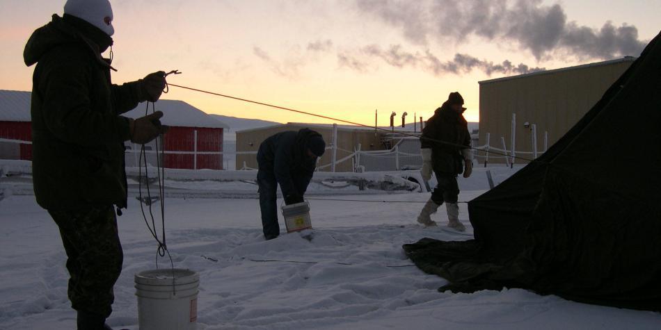 Registran la mayor temperatura en el sitio más septentrional del mundo