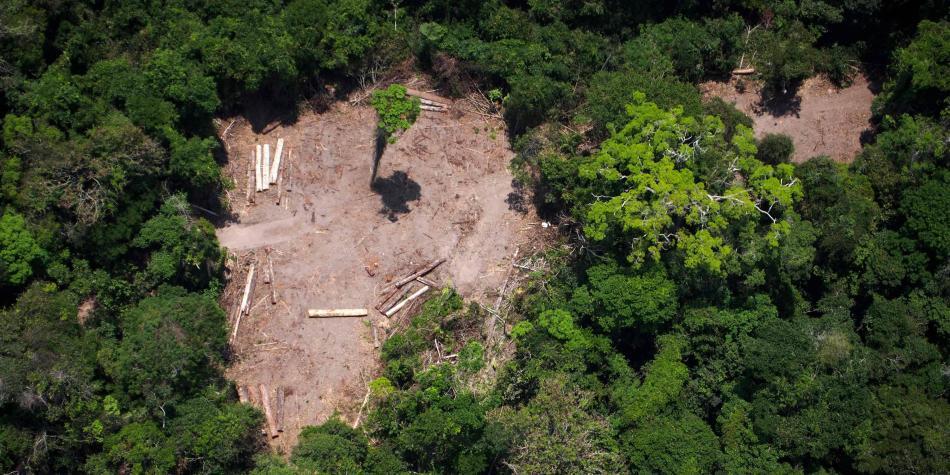 Áreas amazónicas en Brasil se venden ilegalmente en Facebook