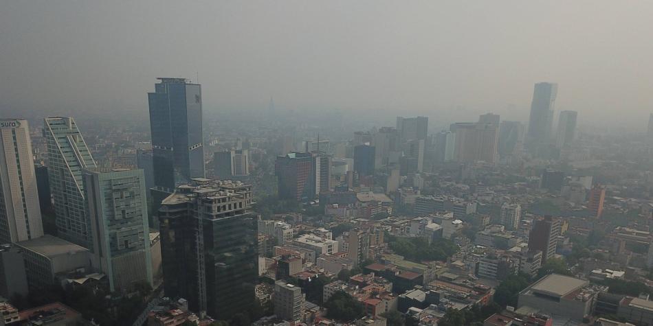 Árboles artificiales contra la polución, el plan que tiene México
