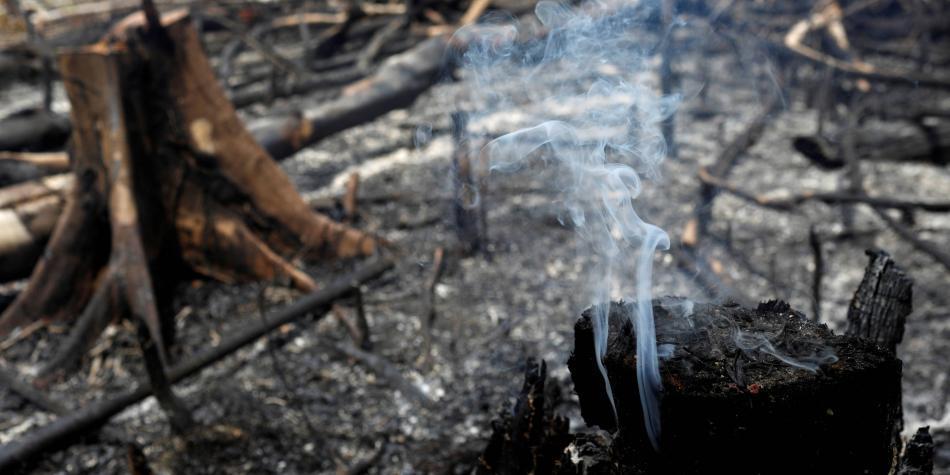 'Bolsonaro es inconscientemente incompetente' en temas ambientales