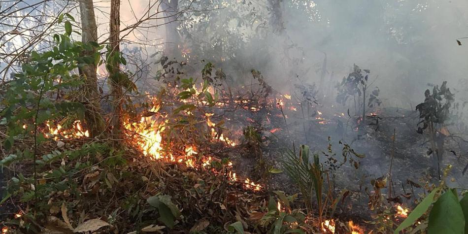 Indígenas culpan a gobierno de Brasil y Bolivia por crisis ambiental