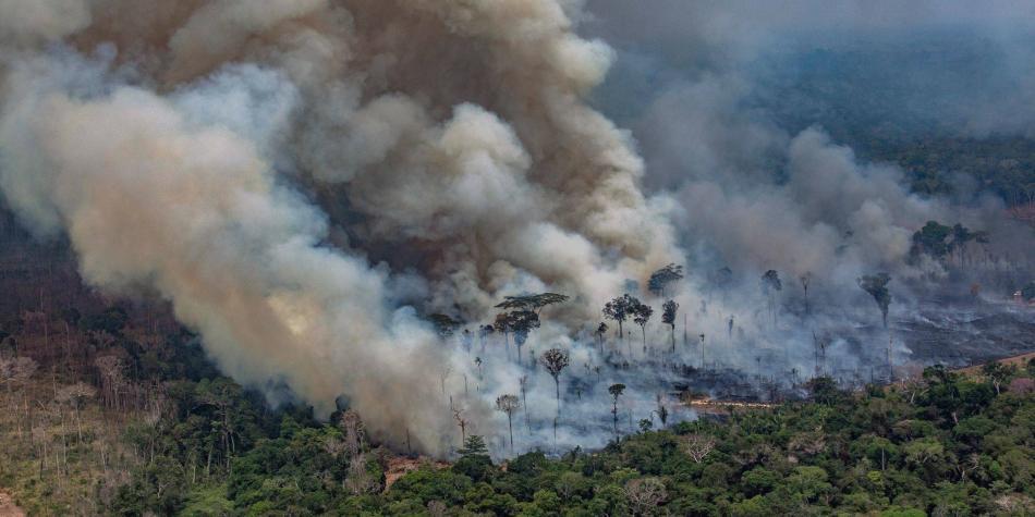 Resultado de imagen para nuevos incendios amazonas