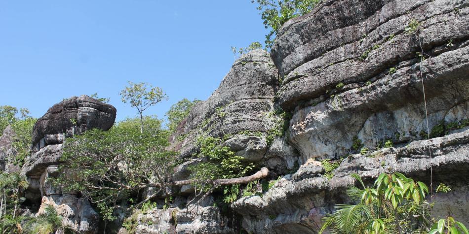 Guaviare le apuesta al turismo amigable con el medio ambiente