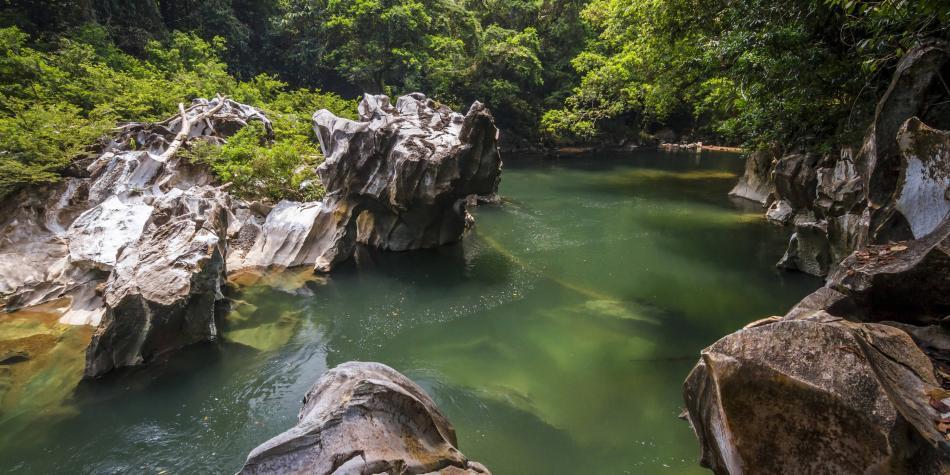 Se declaran 15.900 nuevas hectáreas protegidas en Antioquia