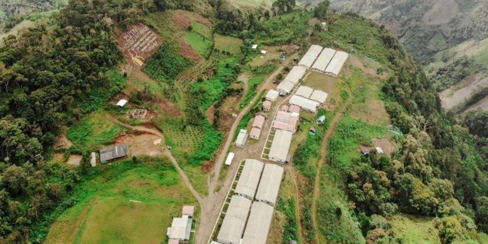 Excombatientes tendrán 270 hectáreas para sus proyectos productivos