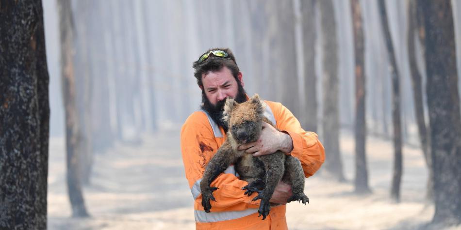 Nueve datos que debe saber sobre los incendios en Australia