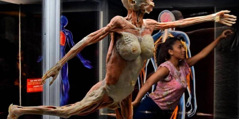 El cuerpo humano en su esplendor puede observarse en Barranquilla
