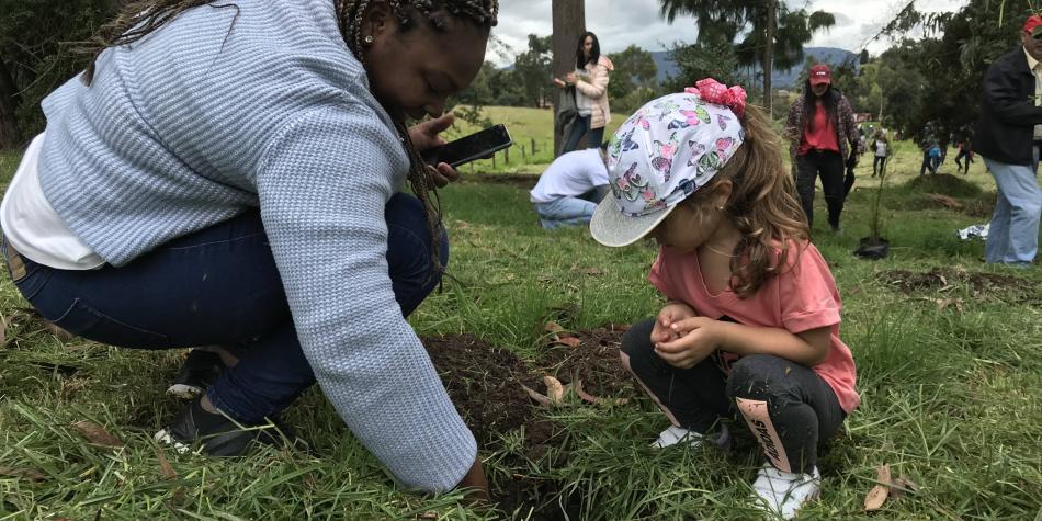 La iniciativa One Tree Per Child (Un árbol por niño) llega a Colombia