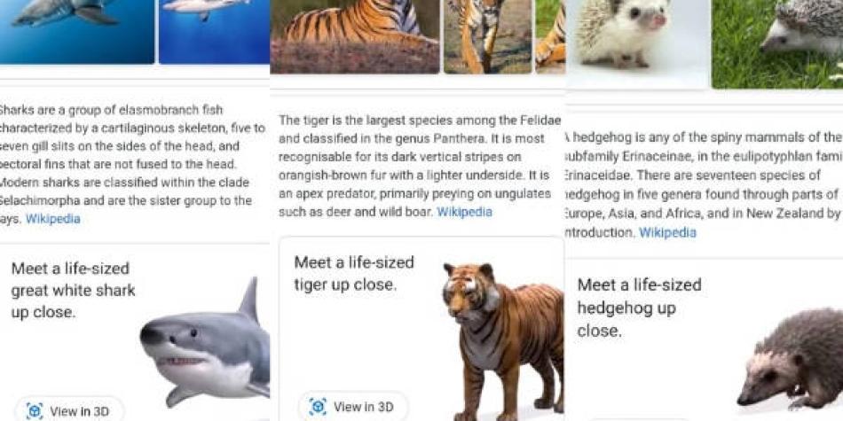 ¿Cómo ver animales 3D en las búsquedas de Google?