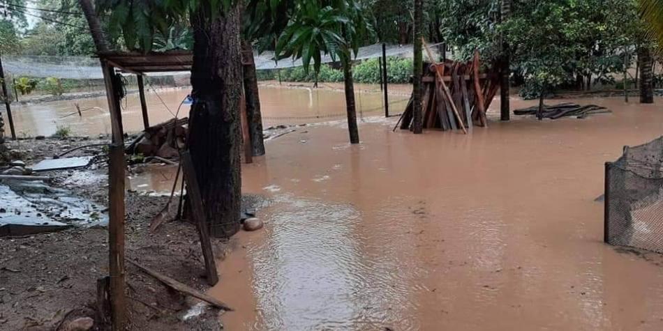 El crudo invierno en Huila devastó centenares de hogares y cultivos