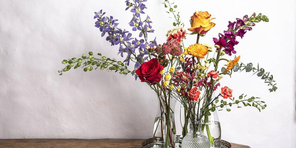 Guía rápida para conservar y mantener flores en casa