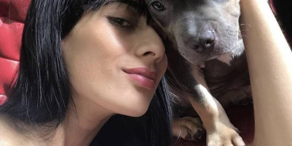 Desgarrador relato de la dueña de la mascota que murió en un avión