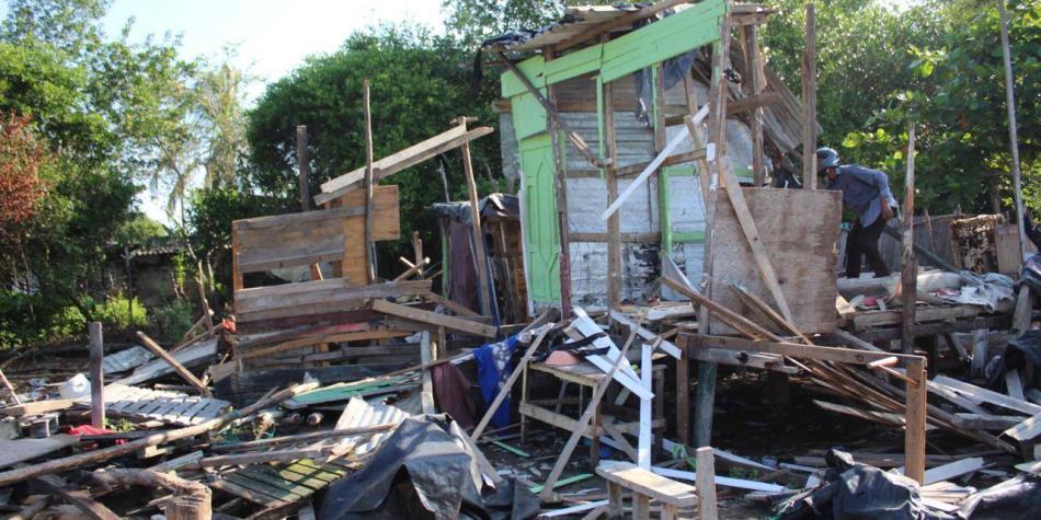 En Cartagena desalojan familias que invadían manglares en ciénaga