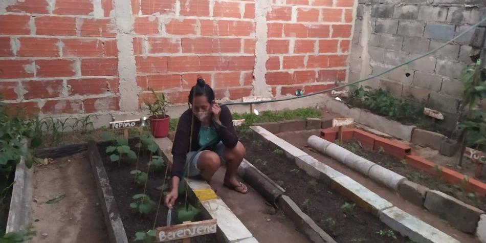 Impulsan las huertas caseras en los barrios del sur de Barranquilla