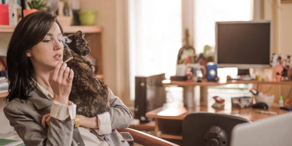 Su perro o su gato también puede ser fumador pasivo - Mascotas - Vida -  ELTIEMPO.COM