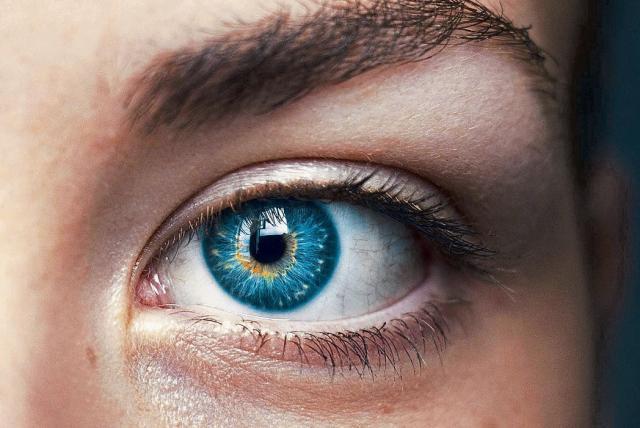 venas en los ojos párpados