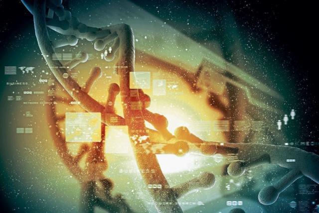 I Motif Nueva Forma De Adn En Las Células Humanas Ciencia