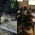 Son más los buenos: manifestantes y Esmad comieron juntos durante paro