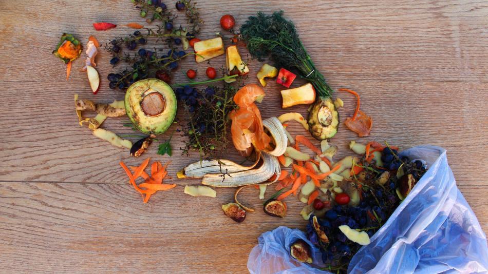 En América Latina, un tercio de los alimentos se pierden y desperdician -  Medio Ambiente - Vida - ELTIEMPO.COM