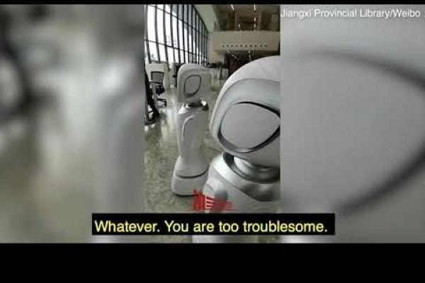 When Robot are arguing in China