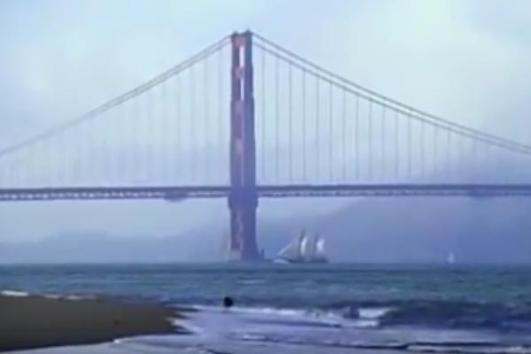 Trailer The Bridge
