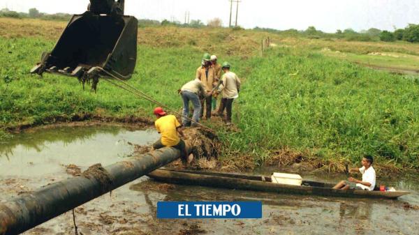 Destinan recursos para la limpieza de la ciénaga San Silvestre - El Tiempo