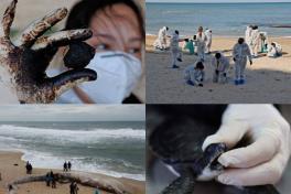 Cierran playas en Israel por abundante derrame de petróleo