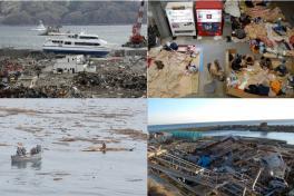 Terremoto en Japón 2011 1